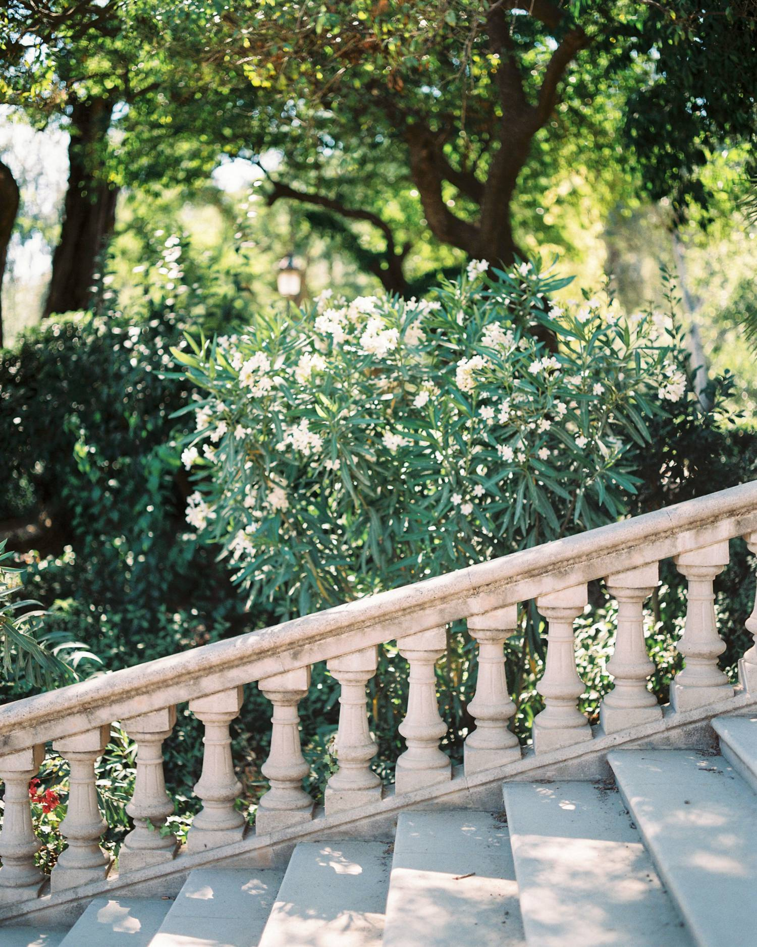 Barcelona film photography ciutadella parc stairs
