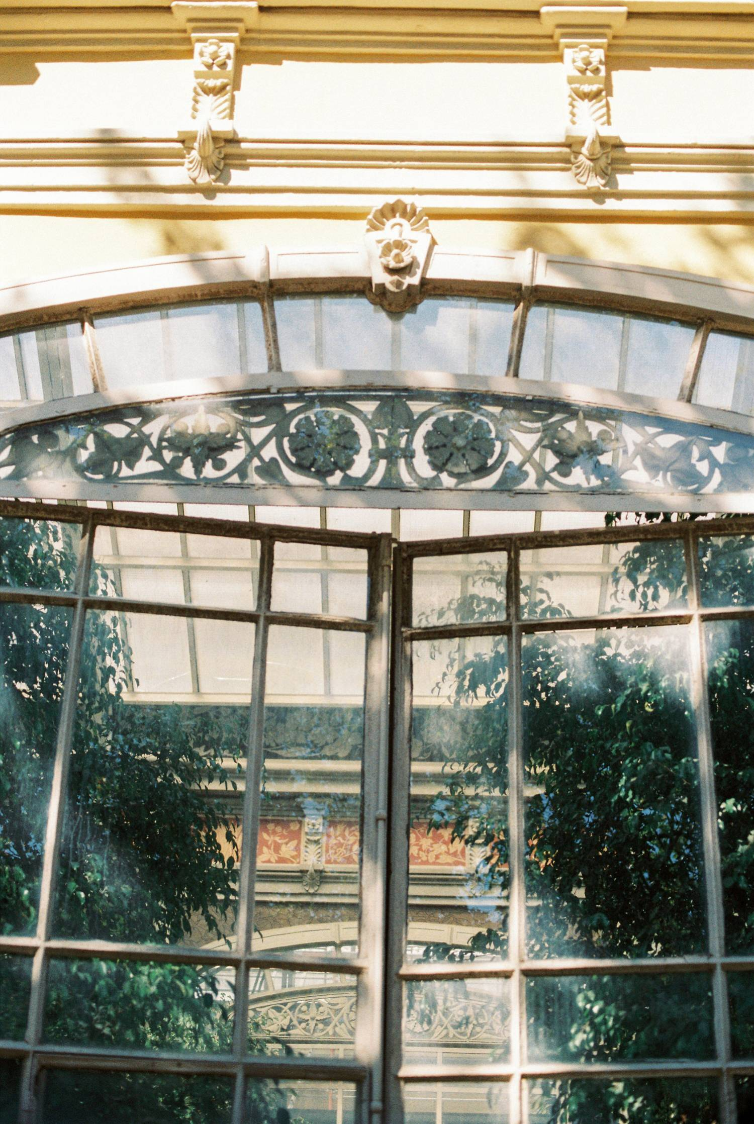 Barcelona film photography antique green house